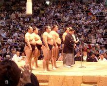sumo 002.jpg
