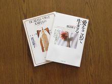 book032.jpg